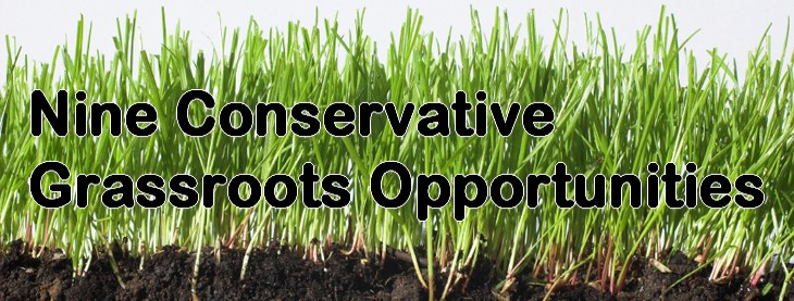 grassroots opportunities